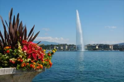 Singles aus Genf